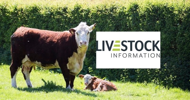 What's the latest on the Livestock Information Service?