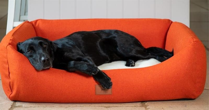 Wool dog bed_74989