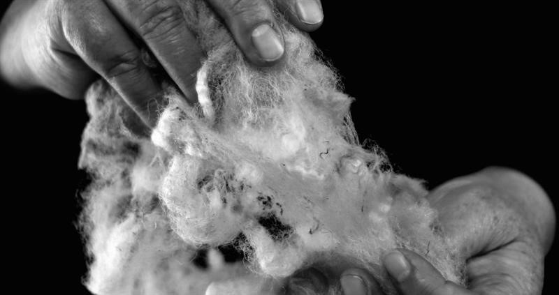 Uist wool_75034