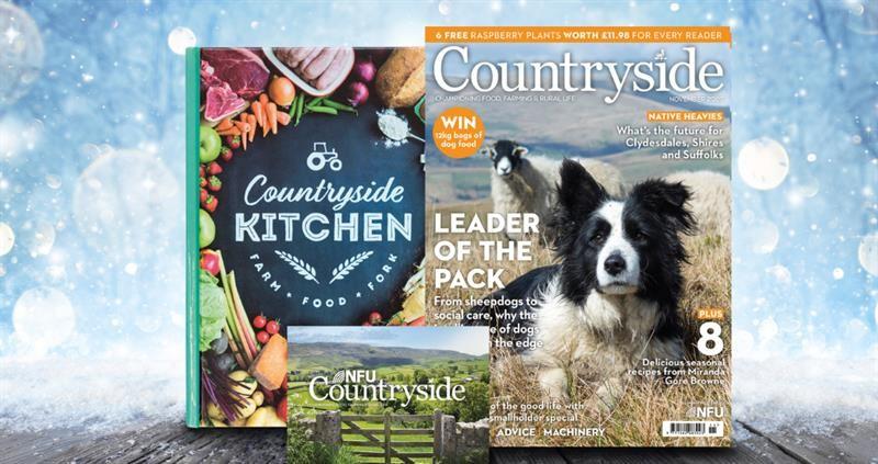 Countryside gift membership_75285