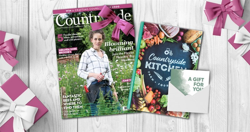 august issue gift membership_79646