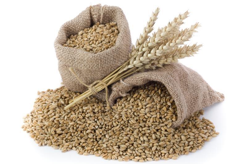 Sack of grain_13092