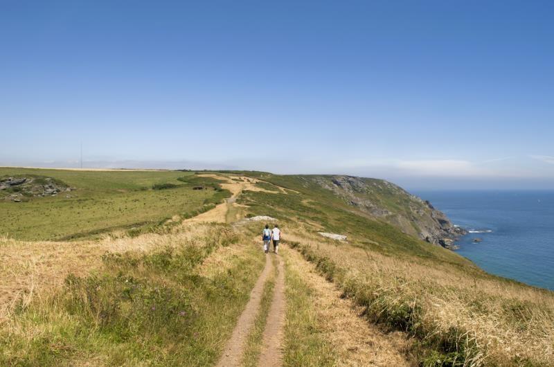 Coastal Path, Bolberry_7492
