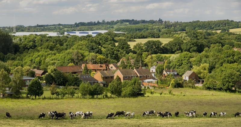 Countryside landscape_16976