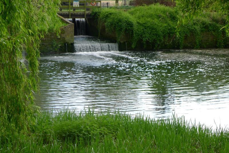 River Stour_54342