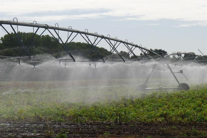 linear irrigator_72622