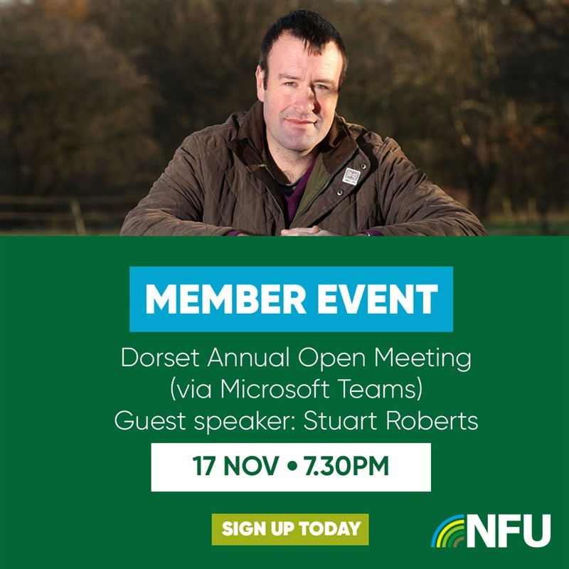 Dorset Annual Open Meeting 2020