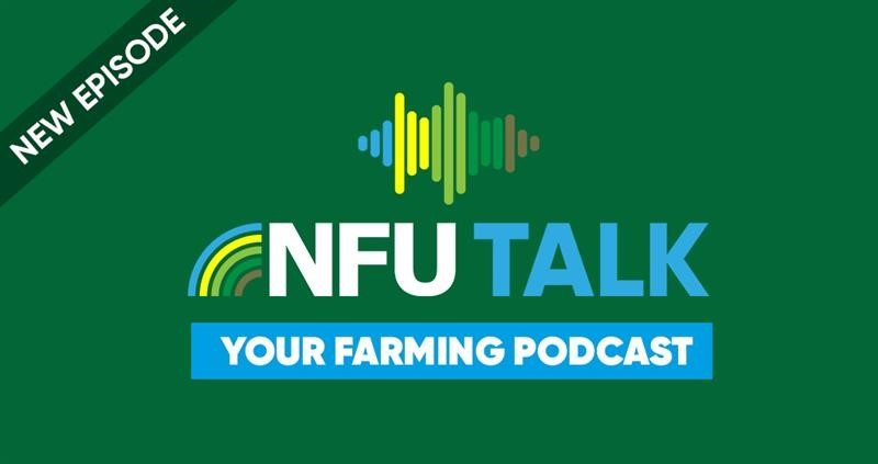 NFU Talk: episode 1_75190
