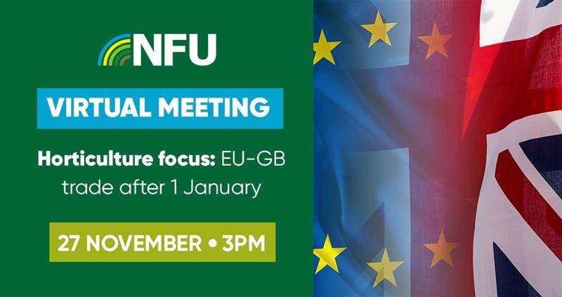 Horticulture focus: EU-GB trade after 1 January