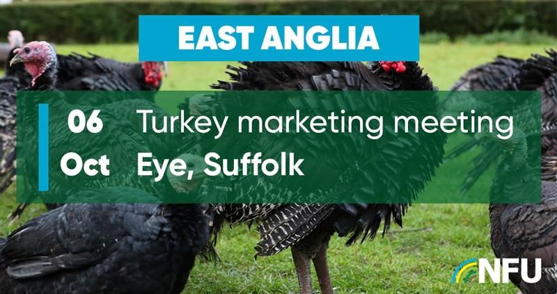 East Anglia Turkey Marketing Meeting