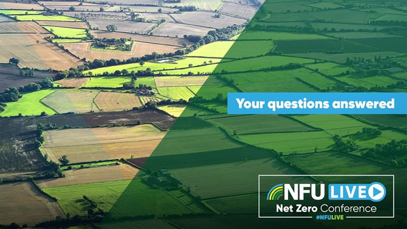 Net Zero: Your questions answered