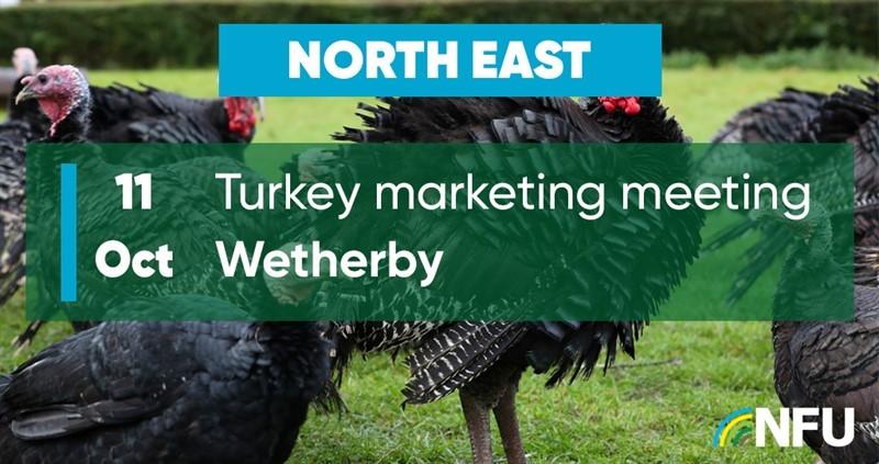 North East Turkey Marketing Meeting