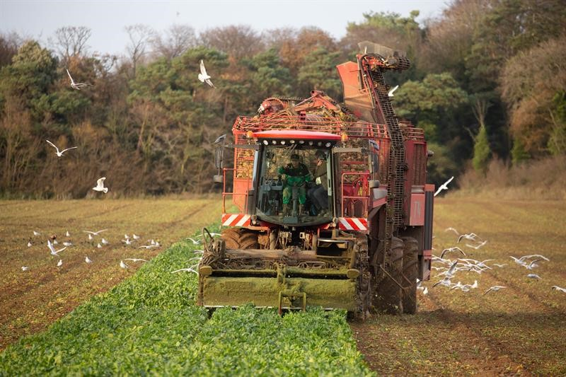 Countryside COP watch again: Sugar beet and carbon