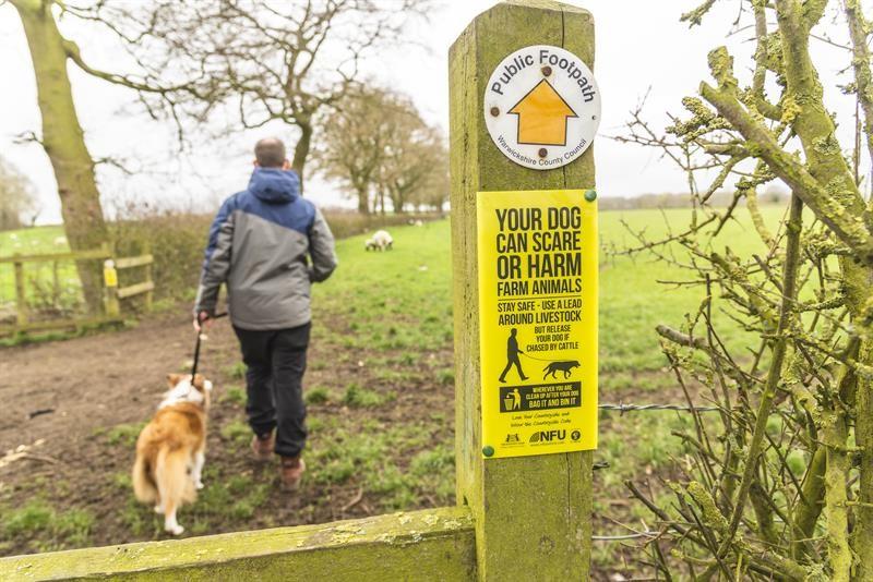 Public footpath sign on stile farmland_63897