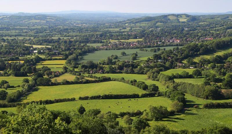 Mixed farm landscape Herefordshire_44287