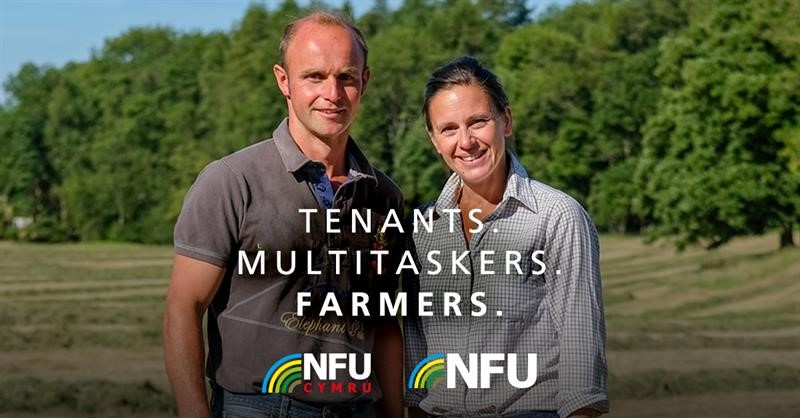 Quarterly campaign tenants service linked in facebook twitter_71993