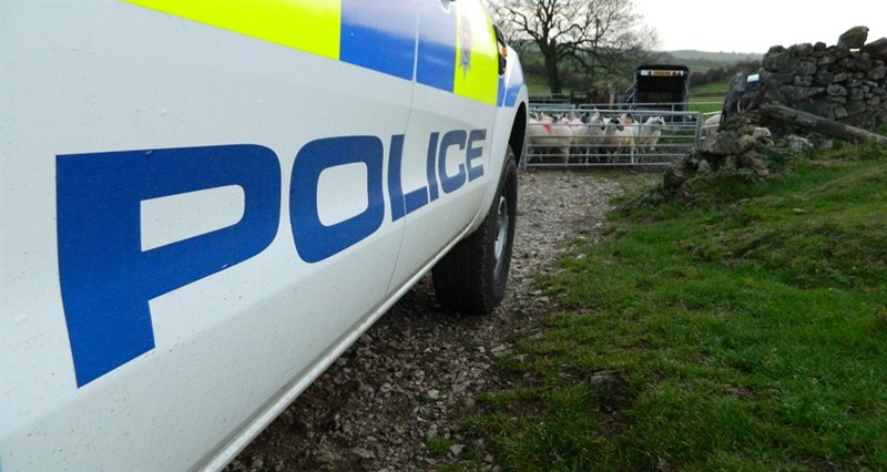 NFU Cymru survey shows one in five Welsh farmers were victims of crime last year
