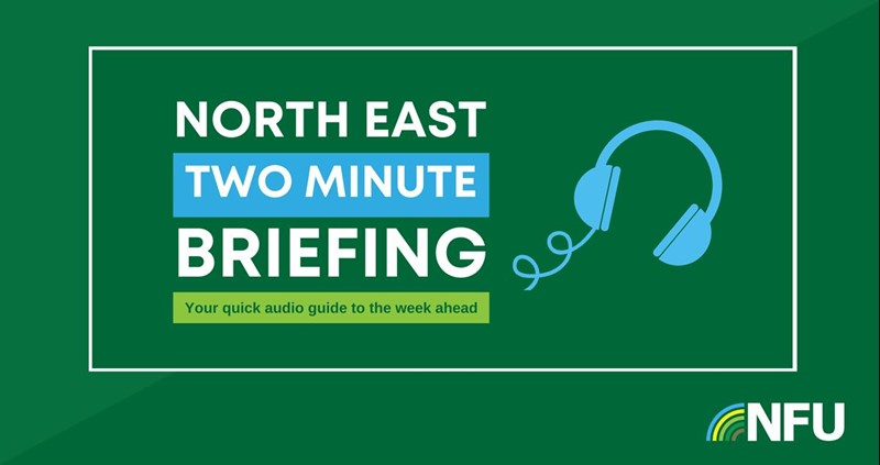 North Est Two Minute Briefing Graphic_75347