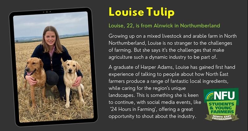 S&YFNEP Louise Tulip_75262
