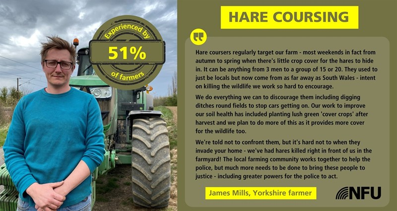 James Mills Hare coursing case study North East_77930