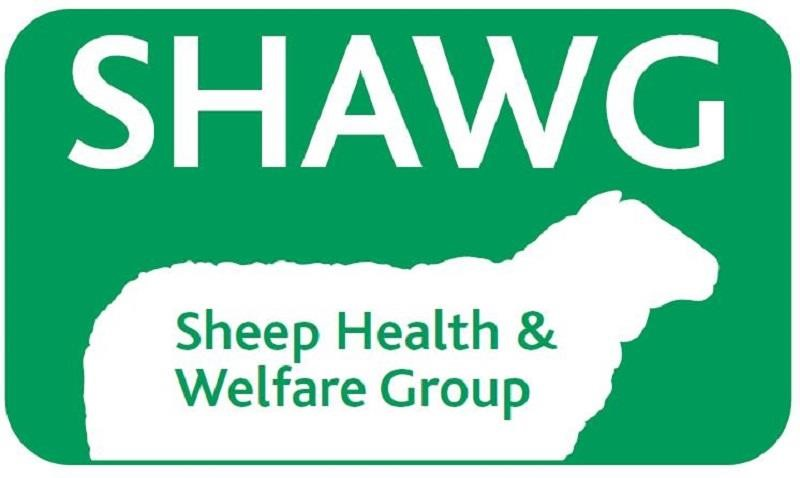 SHAWG conference 2020