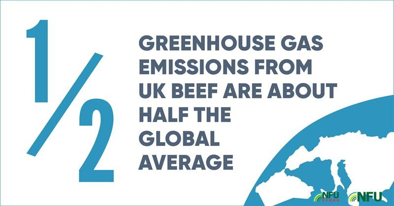 Twitter British beef greenhouse gas carbon footprint infographic_70702