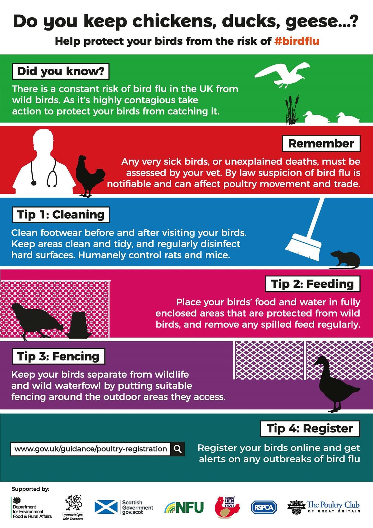 Defra AI bird flu leaflet_75569