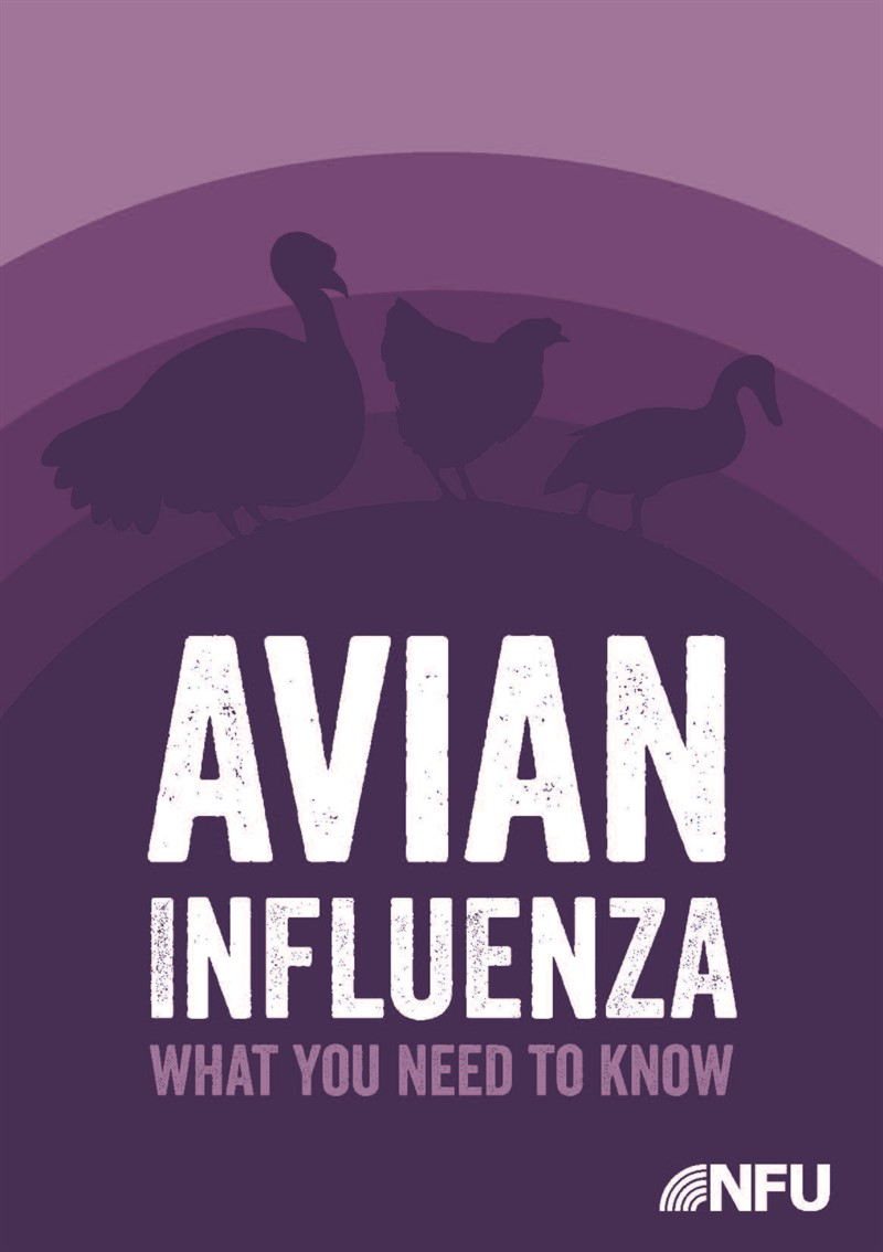 NFU guide to Avian Influenza_75570