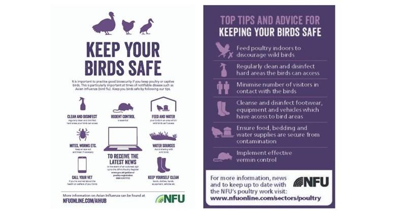 NFU avian influenza resources_75573
