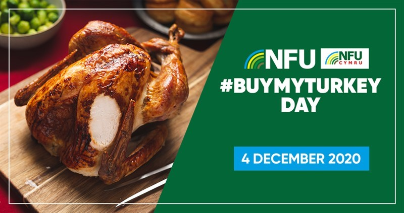 Get involved with #BuyMyTurkey day