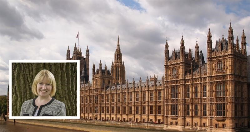 Gail Soutar on Parliament background_71903