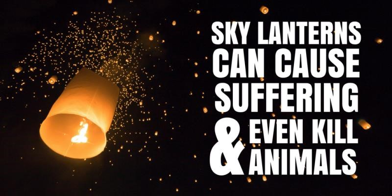 National sky lantern ban needed, new coalition urges