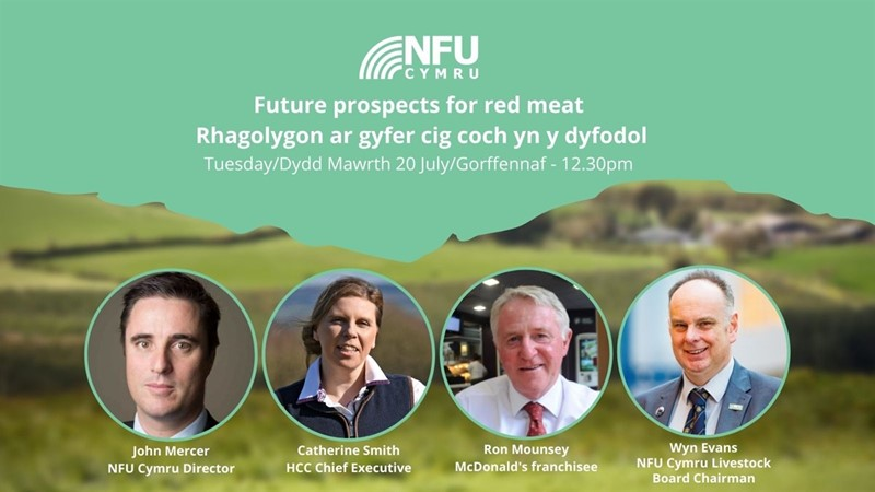 Future prospects for red meat - webinar_79463