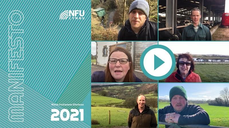 NFU Cymru manifesto eng 2021_77767