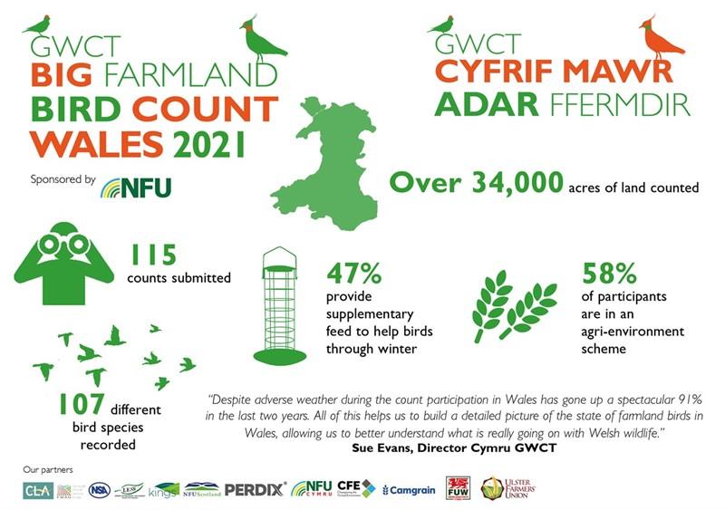 Big Farmland Bird Count - Wales_77887