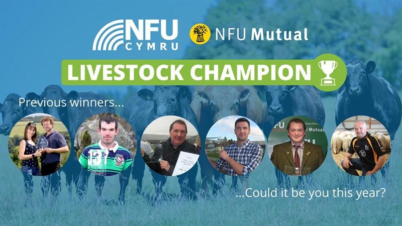 Livestock champion award_80872