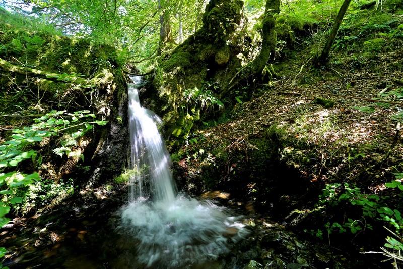 Geraint Watkins waterfall_79962