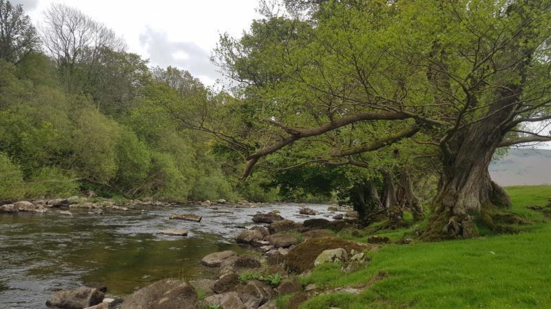 river, stream, landscape, Wales_69446