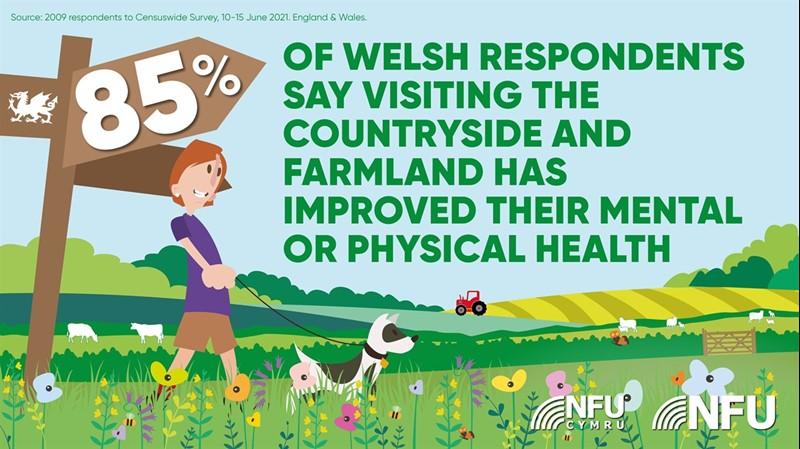 Cymru wellbeing graphics_79883