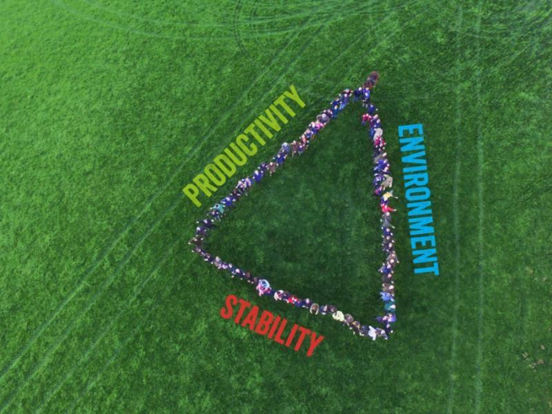 Triangle DAP_58224