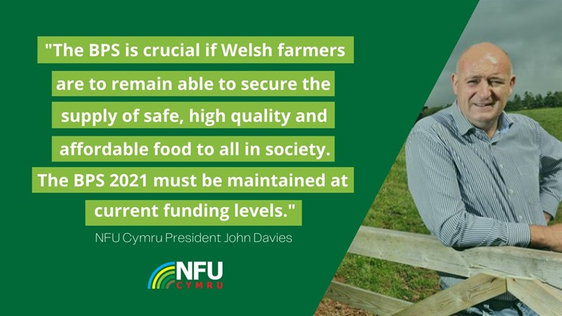 'BPS crucial to Welsh farmers and funding levels must be maintained', says NFU Cymru