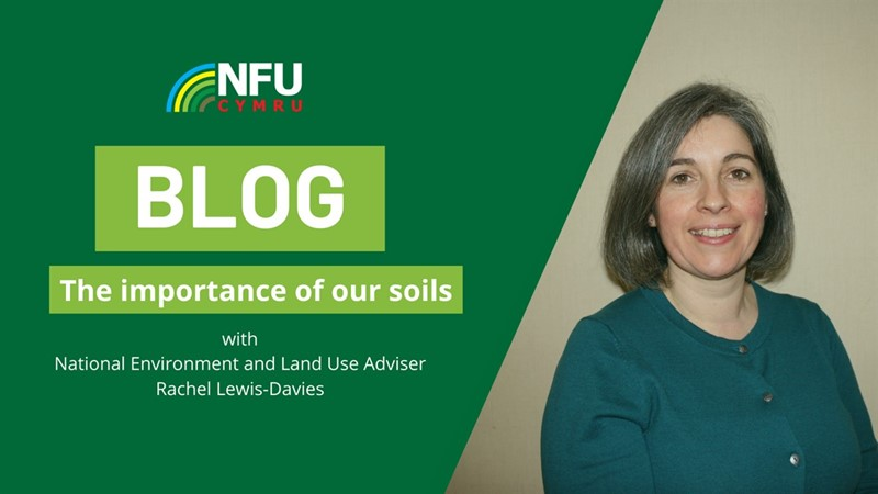 """Many soils in Wales remain in good condition"" according to ADAS report"