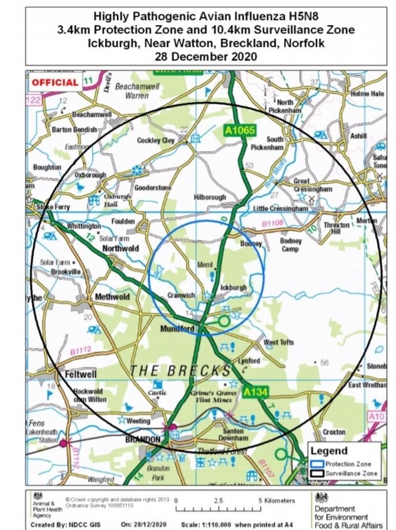 Ickburgh avian influenza December 2020 PZ & SZ map_76393
