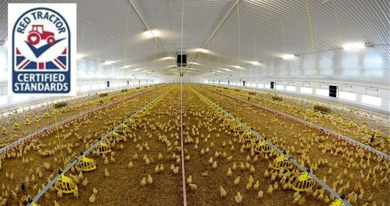 Red Tractor poultry_74253