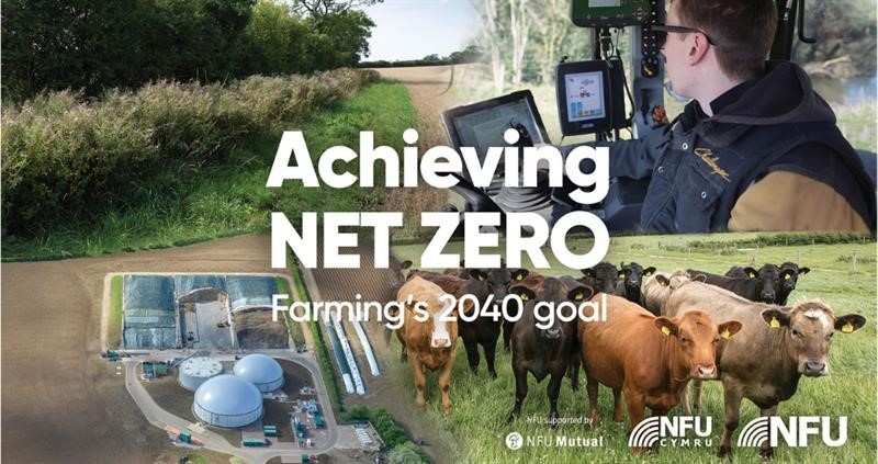 Achieving Net Zero report cover image_68792