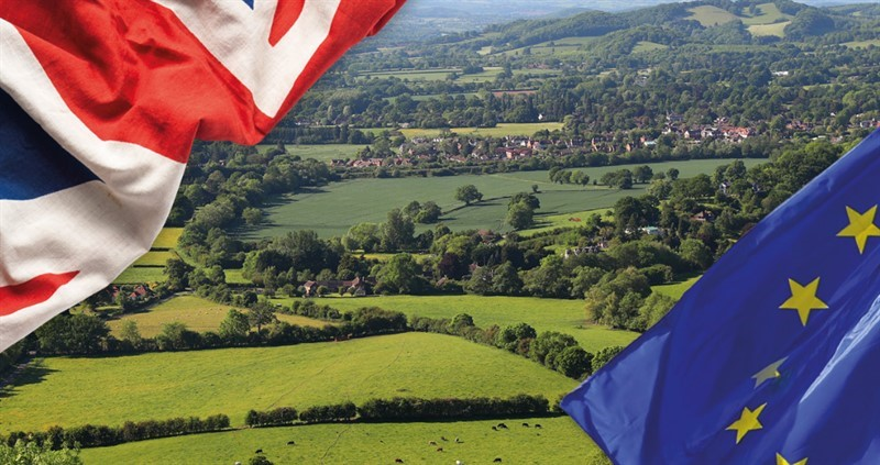 union jack and eu flag at corners of a british farming landscape_76389
