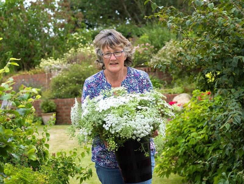 Jill Smith - Binnington Blooms_79977