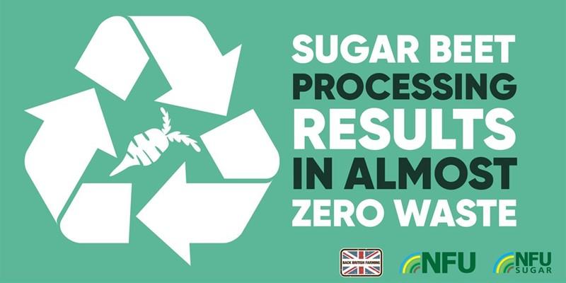 Zero waste sugar infographic_75018