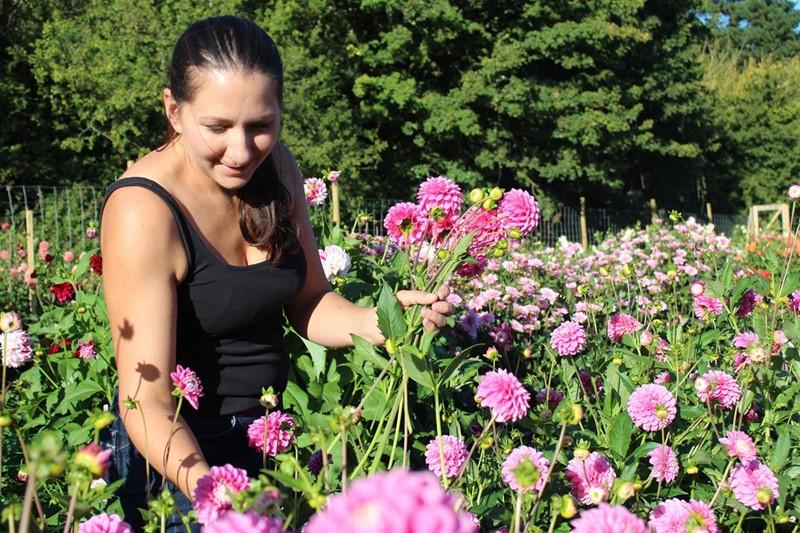 liz rawlings - pipley flowers_79978