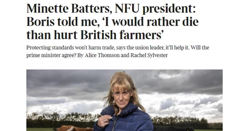 The Times Minette Batters _75277